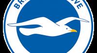 Uniformes (Kits) y Logo del Brighton & Hove Albion