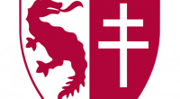 Uniformes (Kits) y Logo del Metz