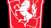 Uniformes (Kits) y Logo del Twente