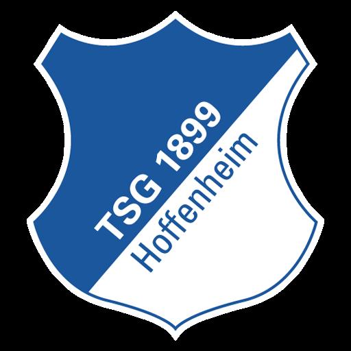 equipación Hoffenheim Dream League Soccer