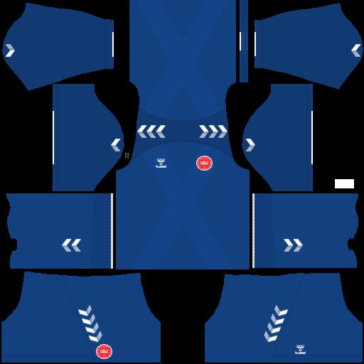 equipación Selección de Dinamarca DLS